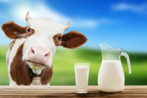 preview-full-cow-milk.jpg.size.xxlarge.crop