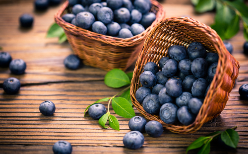 fresh blueberry as beneficial