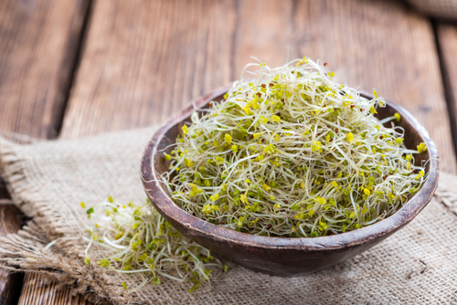 heaping bowl of Broccoli Sprouts along with your Progentra pills